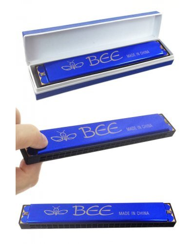 Blue Harmonica Large 24 Holes Bee Brand