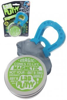 Magnetic Putty Lab plus Horseshoe Magnet