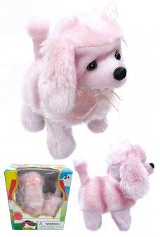 Pink Poodle Puppy Dog Walks Barks Doggy