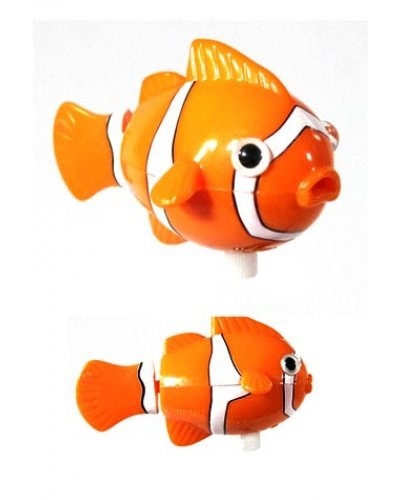 Clara the Clown Fish Wind Up