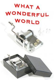 What A Wonderful World Wind Up 1968