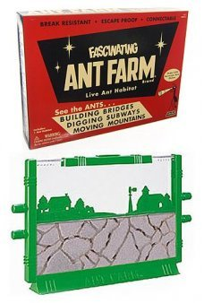 Vintage Ant Farm Retro Science 1956