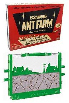 Vintage Ant Farm Retro Science 1956